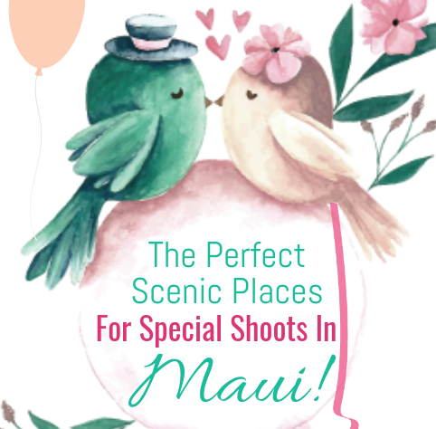 The perfect scenic places for special shoots in Maui